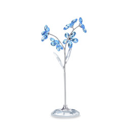 FLOWER DREAMS - FORGET-ME-NOT, LARGE