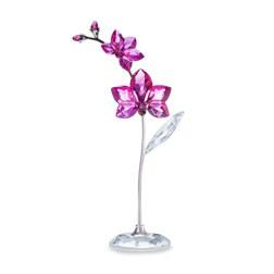 FLOWER DREAMS - ORCHID, LARGE