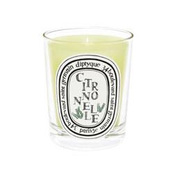 190g candle Citronnelle